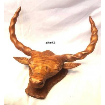 Bull head hand carved on shesham wood