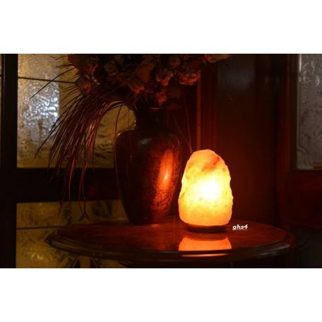Natural Shape Salt Lamp